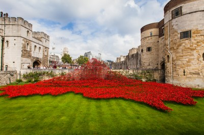 Tower of London poppy installation